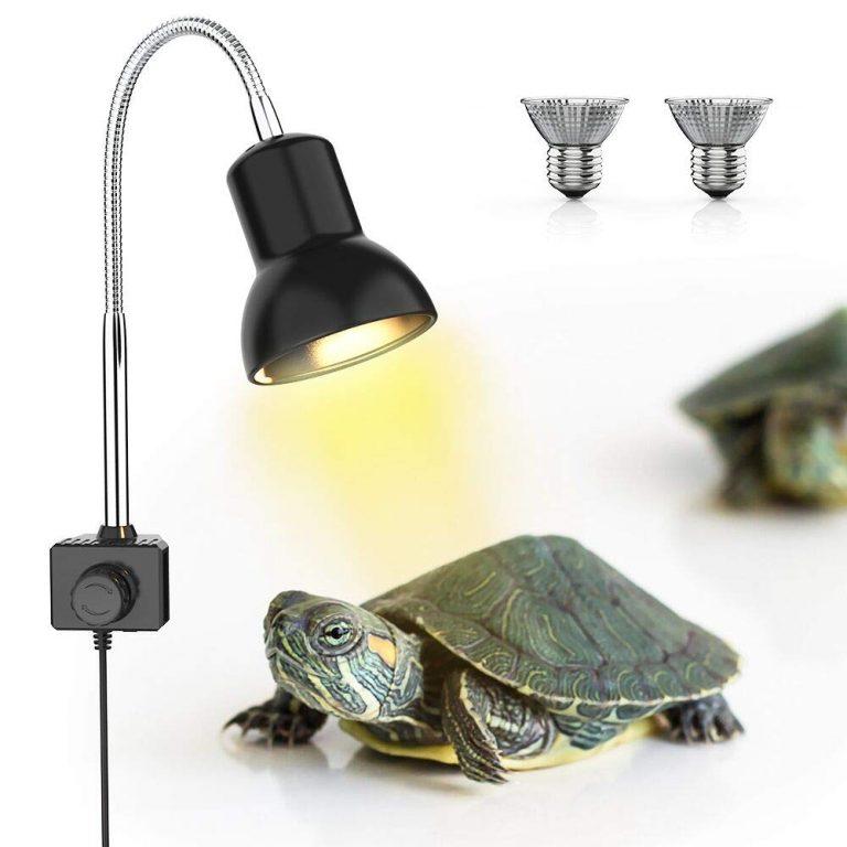 OFERTA AMAZON! Iluminacion para tortuga a 16€